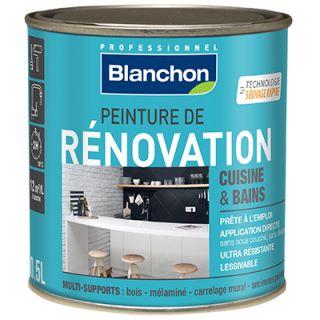 Blanchon - Peinture de Rénovation 0,5L Gris Clair